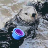 Otter stacking cups
